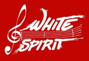 Les mesnuls gazette du pays montfortois for Utilisation du white spirit